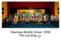 NMS Craftplayers 2018- The Lion King, Jr.